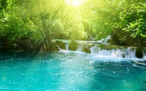 Des ressources alternatives pour protéger la ressource en eau