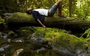 Un homme allongé sur un arbre dans une forêt
