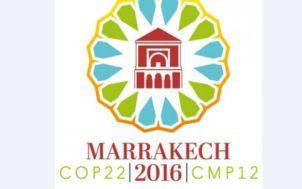 COP 22 : une journée consacrée à l'eau