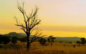La sécheresse : on est pas à sec de solutions