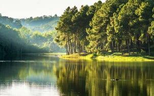 Pollution des ressources, quel impact sur l'eau du robinet
