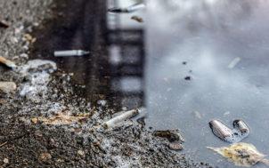 Les mauvais usages des déchets : pollution et problèmes de gestion des eaux usées à la clé